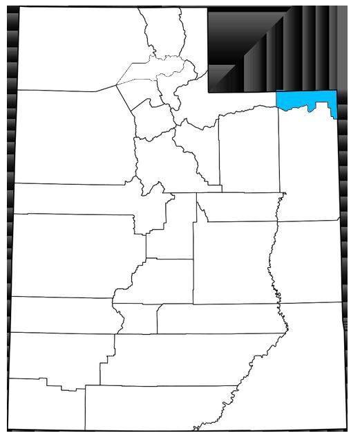 Daggett County Utah Democrats