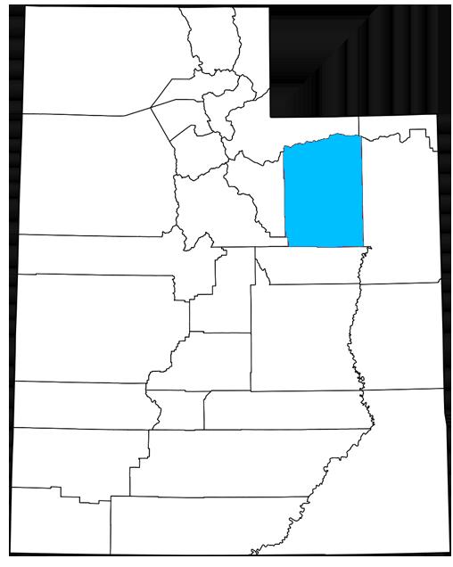 Duchesne County Utah Democrats
