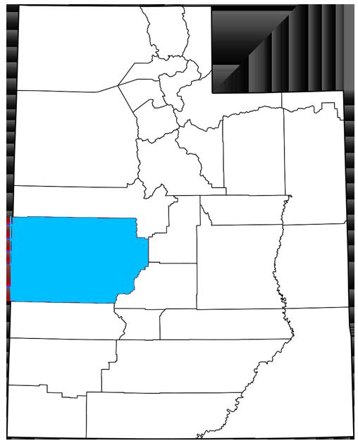 Millard County Utah Democrats