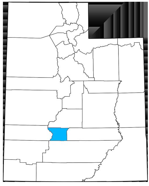 Piute County Utah Democrats