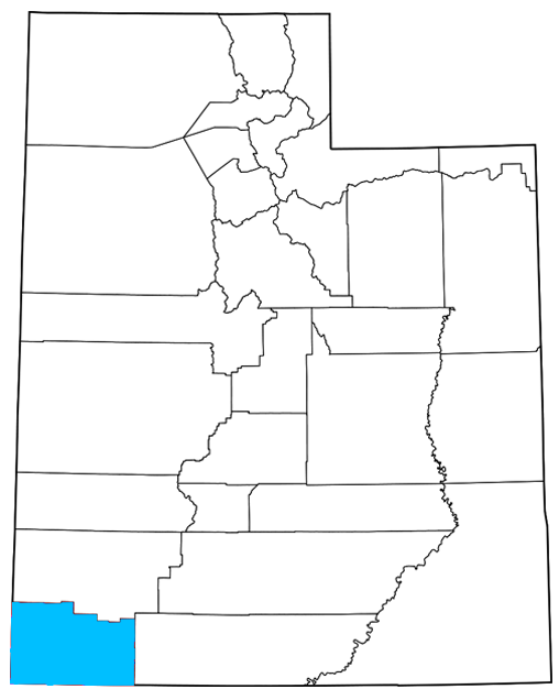 Washington County Utah Democrats