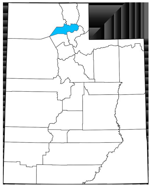 Weber County Utah Democrats